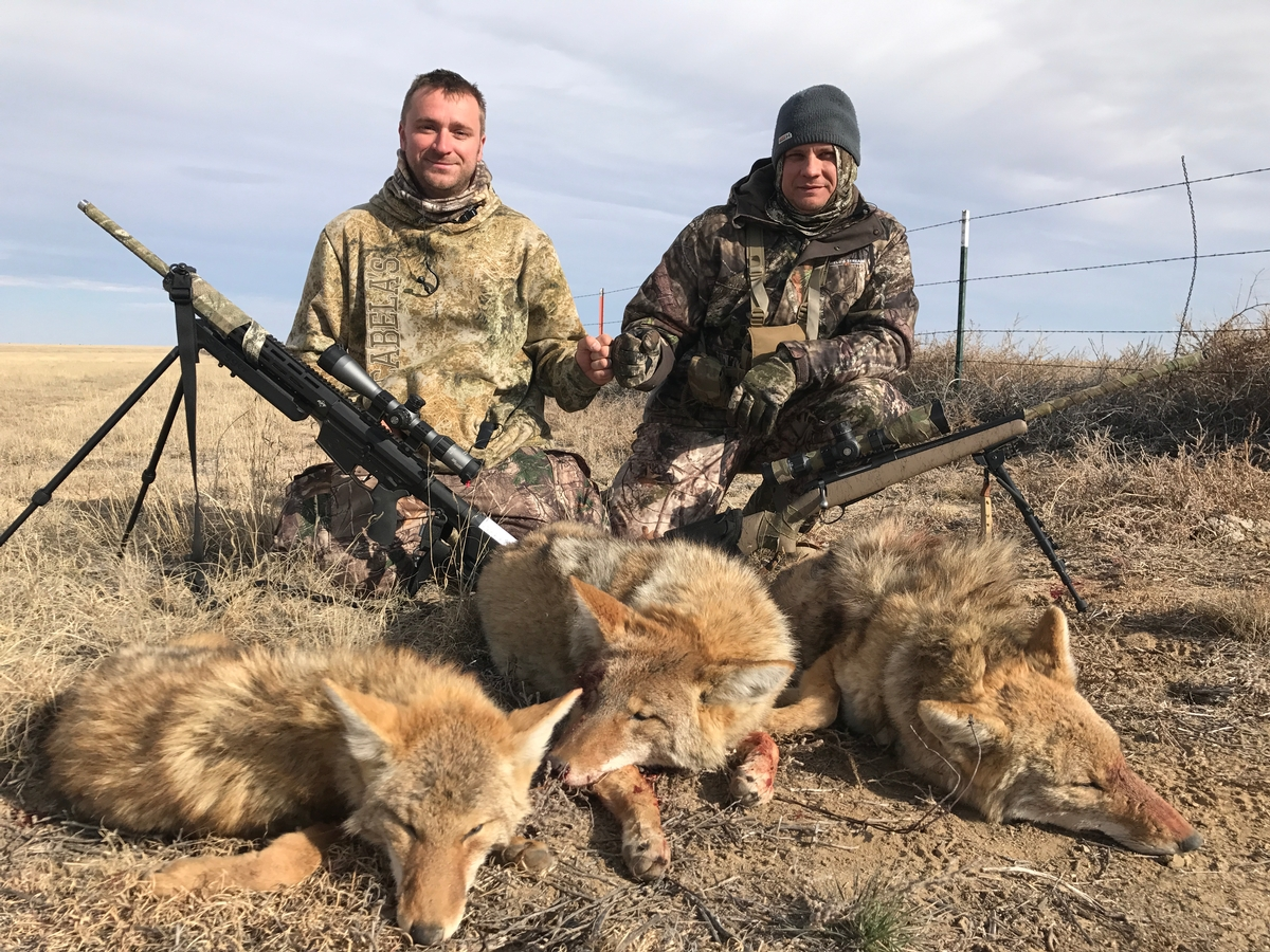 Guided Coyote Hunting Rates, 2019/2020