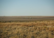 <p>A prairie view over looking some of the ranch. </p>