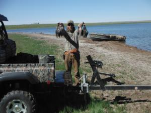 We have duck hunting also. Here are some blue wing teal.